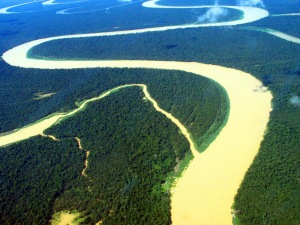 floresta-amazonica-a8f06